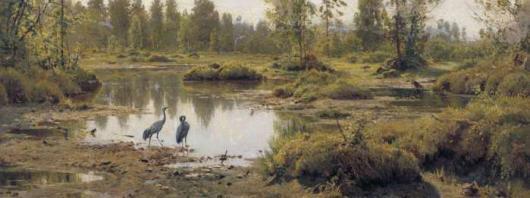 Экскурсия по болотам в России
