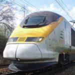 Поезда во Франции задерживаются из-за диких кабанов