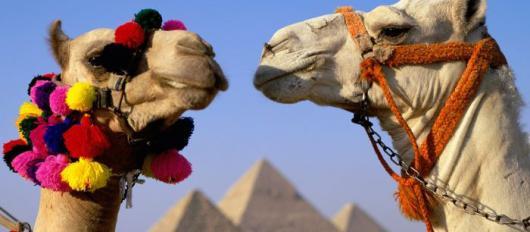 Мобильное приложение EgyptTravel для туристов