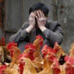 Птичий грипп 2014 ограничит отдых туристов